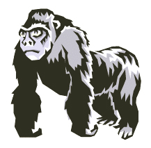 big shouldered gorilla